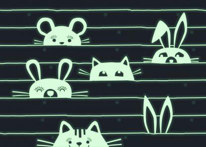 caixa música gatos