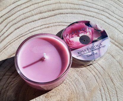 rosa exótica cup vela de soja heart and home