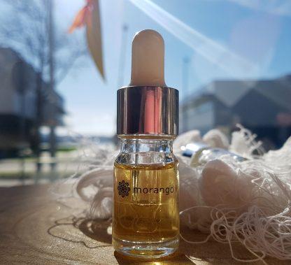 agostinha óleo recarga gesso perfumado morango