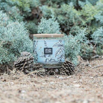 sueños en la pinada eucalipto pinho decoragloba spray vela difusor mikado
