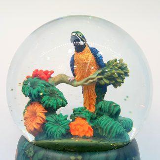 caixa de música globo de neve sereia concha mar papagaio selva