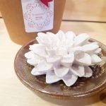 gesso perfumado flor agostinha